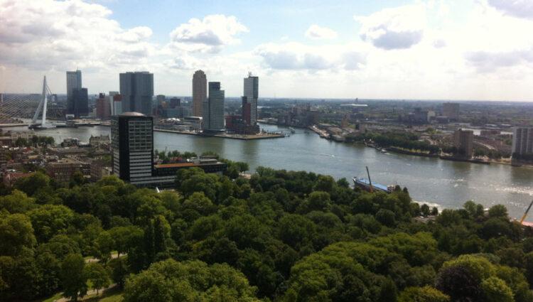 Steller Rotterdam